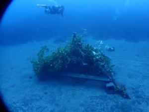 秋の浜のイカ漁礁