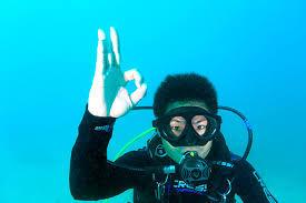 うみのわ体験ダイビング